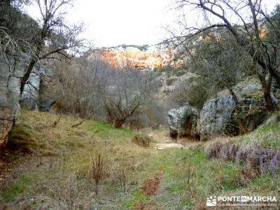 Hoces y cañones del Río Piedra y del Río Gallo -- Laguna Gallocanta - actividad- fines de semana